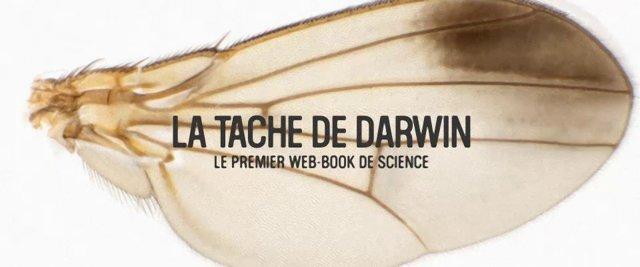 la tâche de darwin